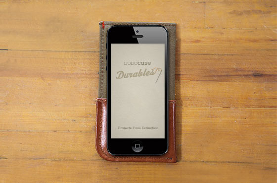7 Attractive iPhone 5 Cases You Should See