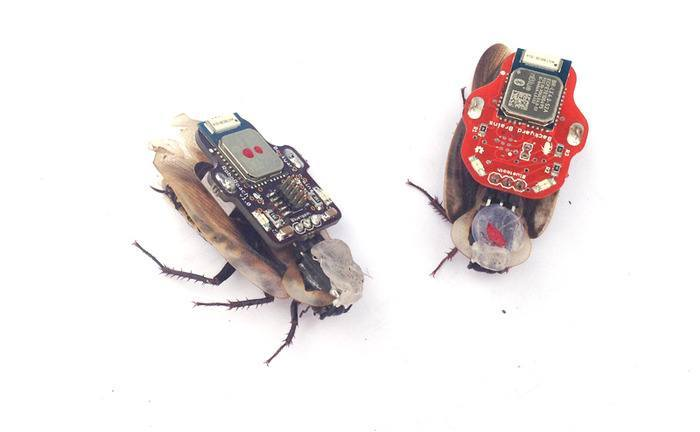 RoboRoach: Control a Live Insect From iPhone, SolePower: Generate Power by Walking