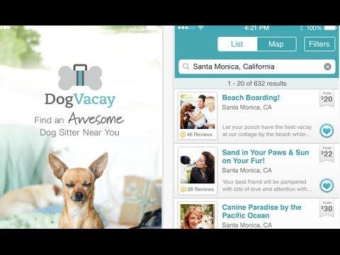 5 dog sitter finder apps for iphone