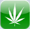 Looking for Legal Pot? Grab your iPhone!