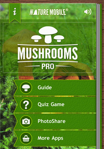 mushroomspr