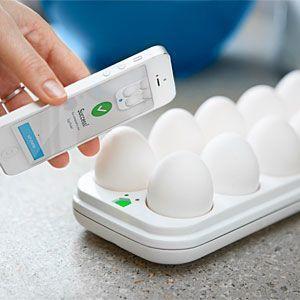 egg minder iphone