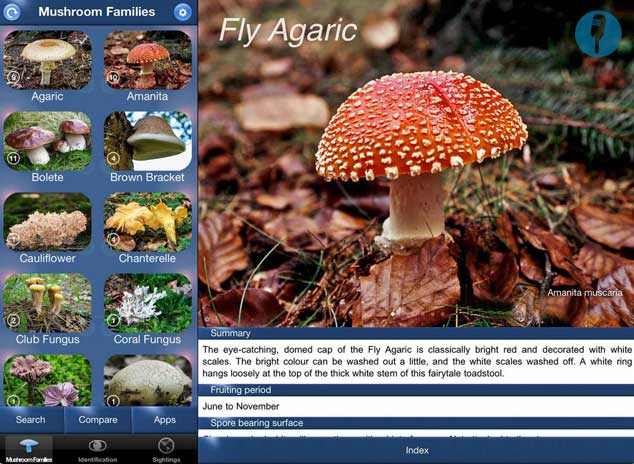 4 Plant Identification Apps for iPhone -