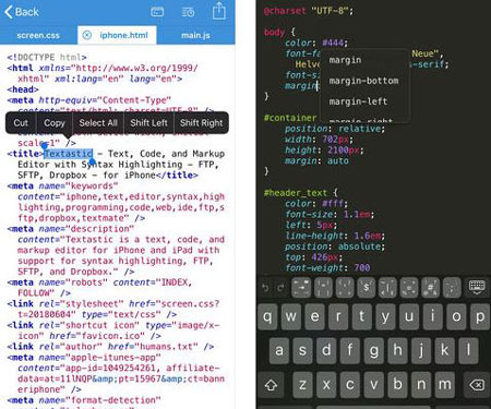 4 Python IDEs for iPhone & iPad -